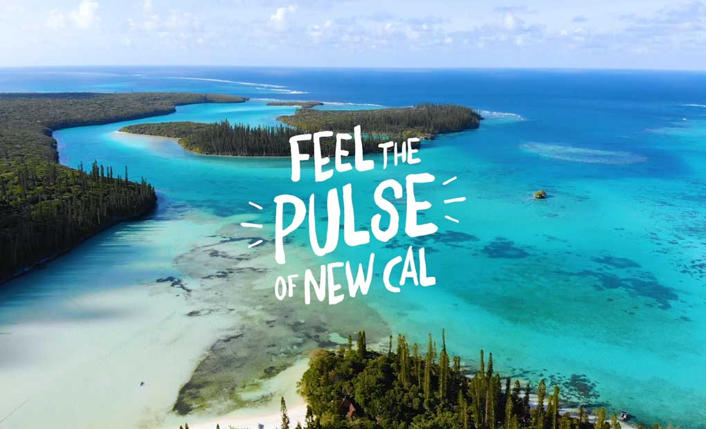 Feel the Pulse of New Cal
